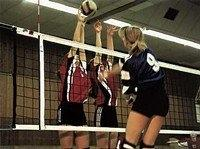 huck-volleyball-turniernetz-dvv-1-polypropylen-4-mm