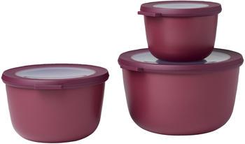 rosti-mepal-cirqula-set-3-teilig-nordic-berry