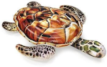Wehncke Badetier Schildkröte