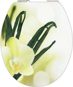 Cornat WC-Sitz Vanilla Cream (KSDSC305)