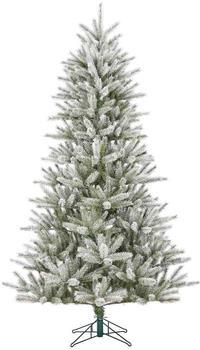 Black Box Trees Caroline Maat 215cm frosted grün