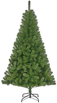 Black Box Trees Charlton Weihnachtsbaum 120cm grün