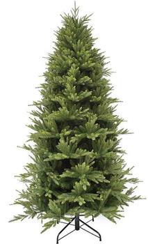 Triumph Tree Harrison maat 155cm grün