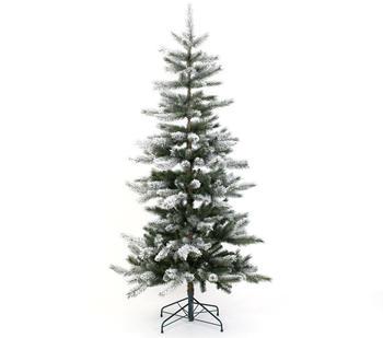 Evergreen Snowy Cedar 180cm ( PGT02590007)