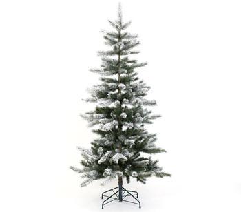 Evergreen Snowy Cedar 210cm (PGT02600007)