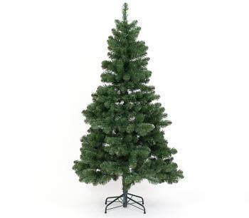 Evergreen Oxford Kiefer 210cm (PGTG70GH302X08)