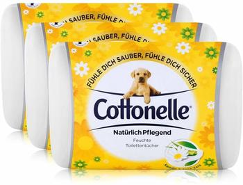 Cottonelle 3x Hakle Cottonelle feuchte Toilettentücher Kamille & Aloe Vera 42 Tücher, Starterset