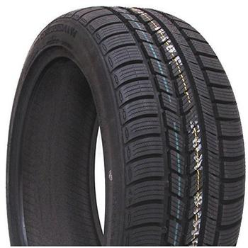 Roadstone Tyre Winguard Sport 205/50 R17 93V