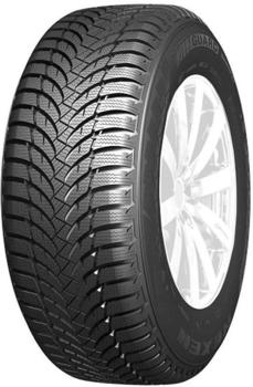 Nexen Winguard Snow'G WH2 195/70 R14 91T