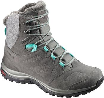 Salomon Ellipse Winter GTX W castor gray/beluga/biscay green