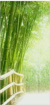 Apalis Raumteiler inkl. transparenter Halterung Bamboo Way grün