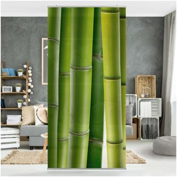Apalis Raumteiler inkl. transparenter Halterung Bambuspflanzen grün
