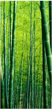 Apalis Raumteiler inkl. transparenter Halterung Bambuswald grün