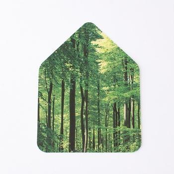 Relaxsound Zwitscherbox Plexiglas Wald