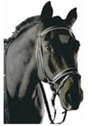 Edelstahl Fahrgebisse & -kandaren Fahrsport Pfiff 6018 Pony-Postkandare