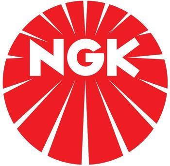 NGK 4309